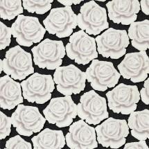 1373-23 Розы Ф1-10